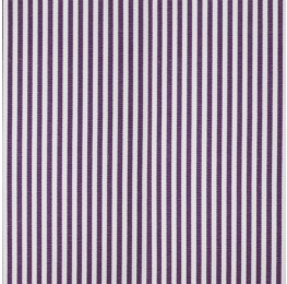 Cotton Poplin Medium Stripe Purple