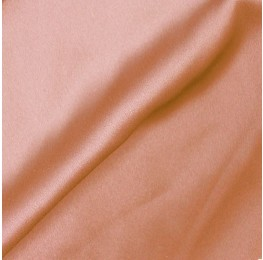 Satin Georgette Nude